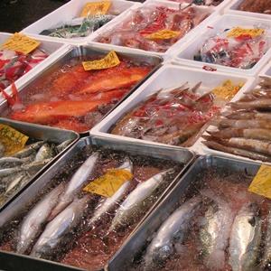 豊洲市場,飲食店,営業時間,ランチ,朝食,おすすめ、見学